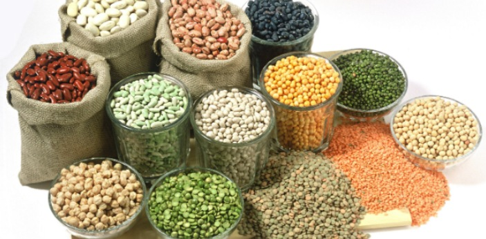 Hybrid seeds are created when two parent plants of the species that are genetically different are
