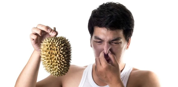 Why does Durian smell so much?