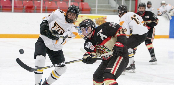 Yes, there is a hockey team for women. In fact, many countries like the United States, India, China