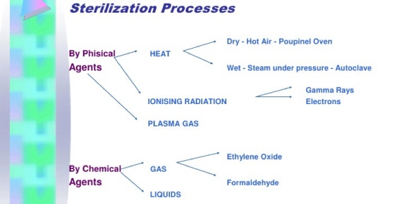 What is the first step in the sterilization process?