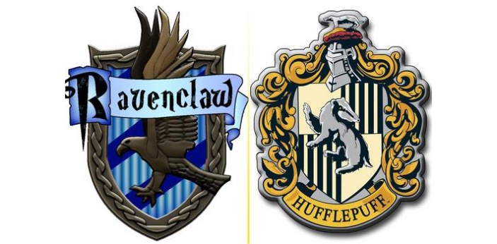 In Harry Potter, there are two houses in the books that often do not get the attention that they