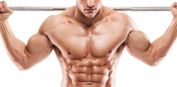 Which muscles does the body use to balance itself while standingstill?
