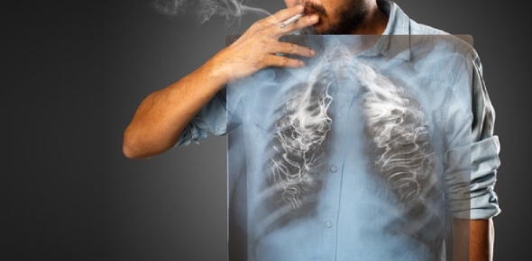 How does tobacco smoke damage the lungs?