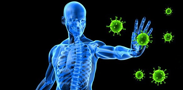 How can i strengthen my immune system?