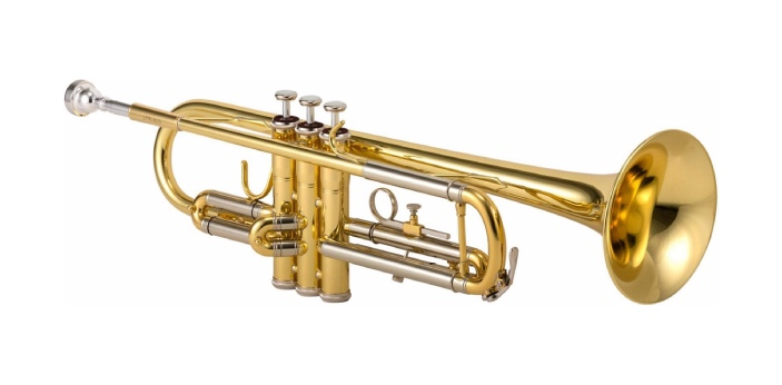 The trumpet is a traditional instrument like a horn, made out of brass. The brass metal makes it