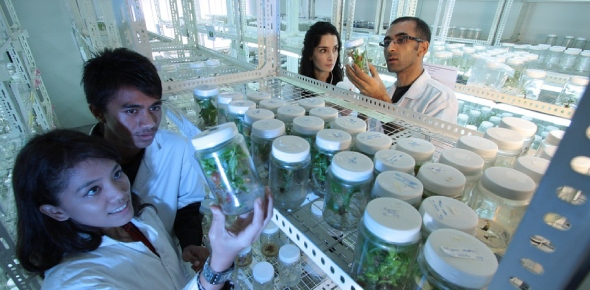 What can agricultural scientists do?