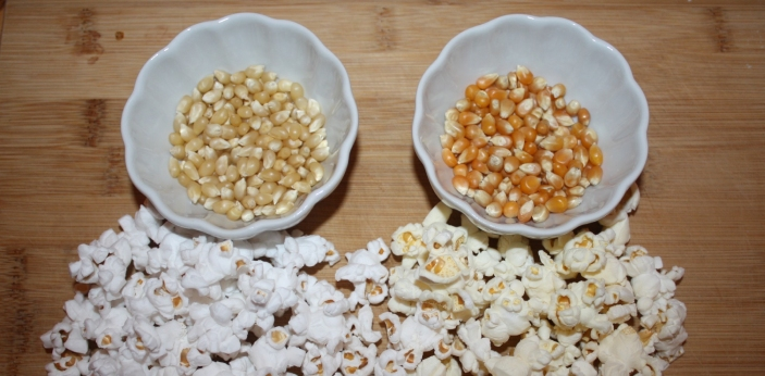 A lot of people assume that the difference between white and yellow popcorn is only their color,