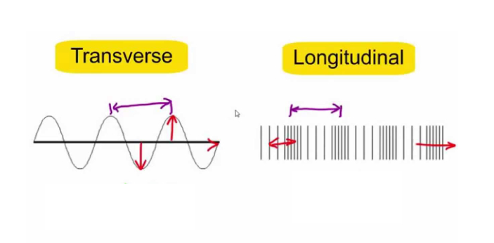 Transverse waves and longitudinal waves are significant waves of propagation. These two perceptions