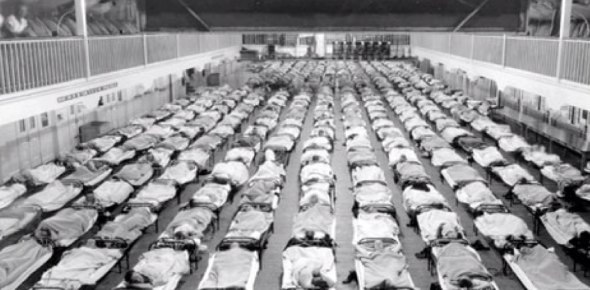 Which epidemic almost wiped out all of humanity?