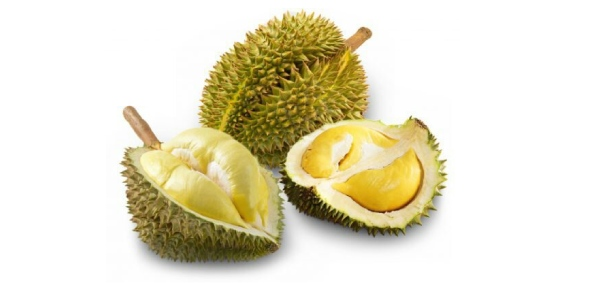 What is a durian fruit?