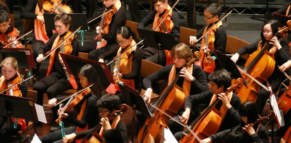 Do you like orchestras?