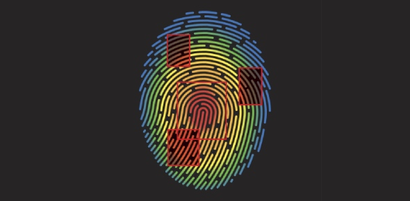 Is DNA fingerprinting the same as DNA profiling?