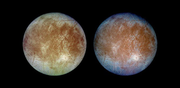 Why do scientists think that Jupiter's moon Europa has life?