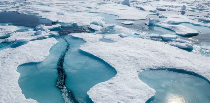 Floe is known to be a floating sheet of ice. There are times when the floe can be seen drifting