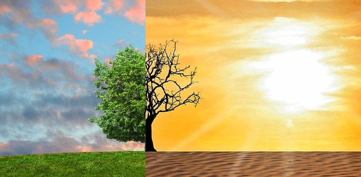 Climate refers to the average weather patterns in a region over a long period of time. Biome, on