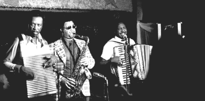 Both Zydeco and Cajun are two different types of music, and most times people tend to use both