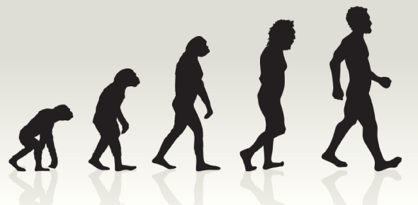 Are human beings the only conscious species in the world?