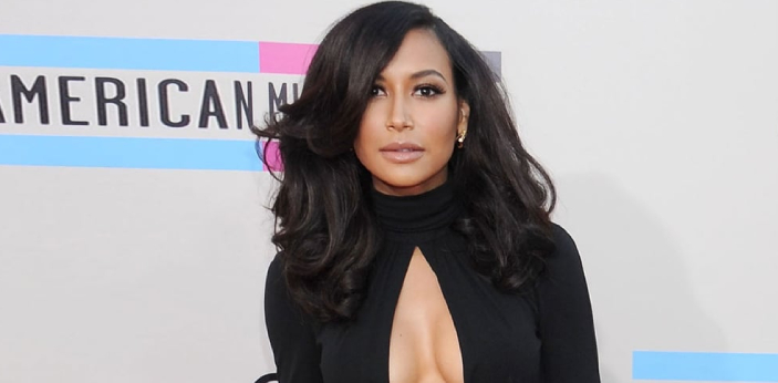 A lot of people were shocked to hear the news that Naya Rivera was missing. People are aware of who