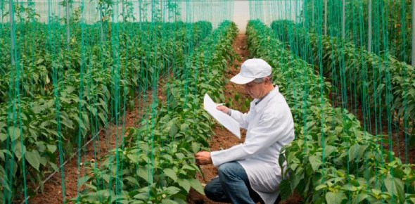 Is agricultural engineering a good career choice?