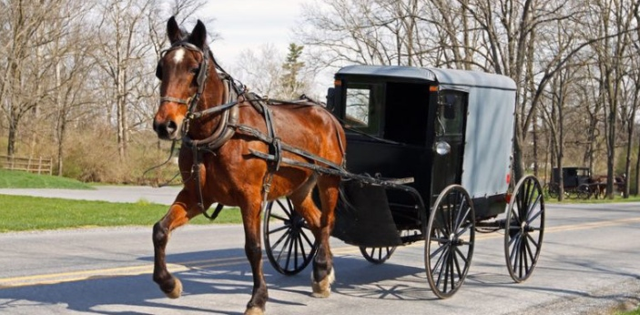The Amish and Mennonite are two groups of people who are unique to the average person in the United