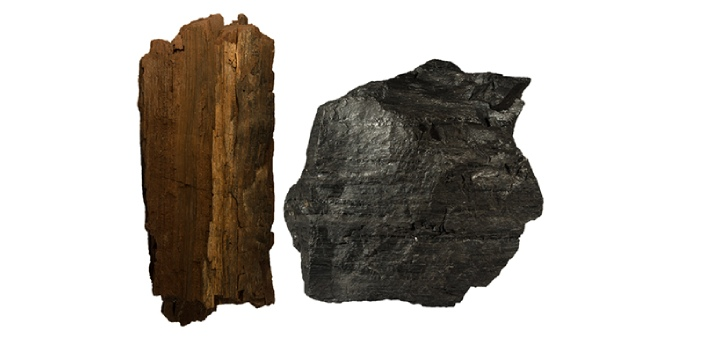 Although both black and brown coal are two types of coal, it is a common sight to see people using