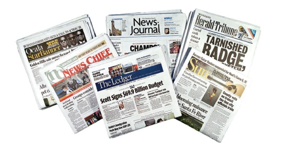 What are the potential disadvantages of allowing newspaper ownership to be concentrated in the hands of a small group?