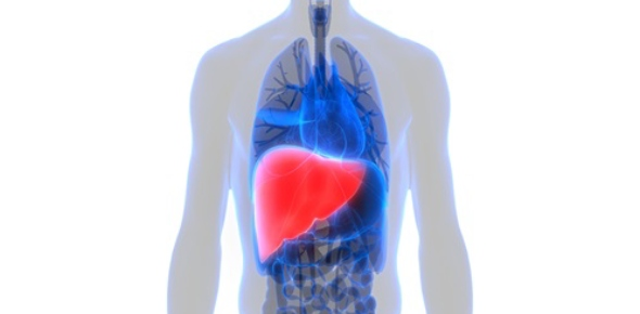 What things can cause liver cancer?