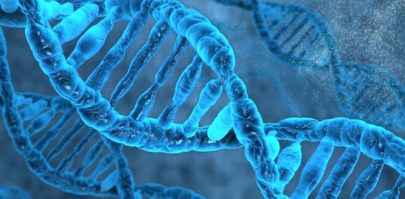 What will most likely be the effect of the change in the DNA molecule?