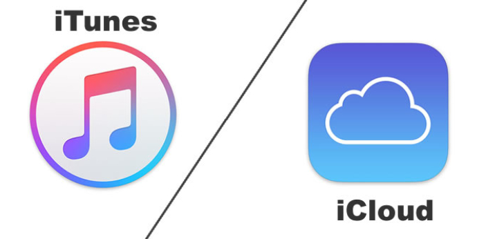 Both iTunes and iCloud are mobile management applications developed by Apple exclusively for the
