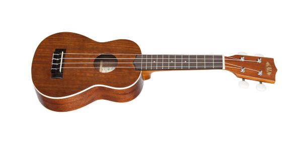 Is ukulele the easiest string instrument to learn?