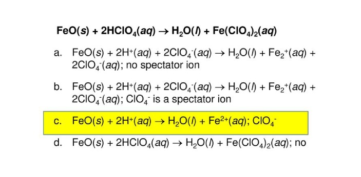 The correct answer is FeO(s) + 2H (aq) → H2O(l) + Fe2(aq), with CIO4- as a spectator ion. For