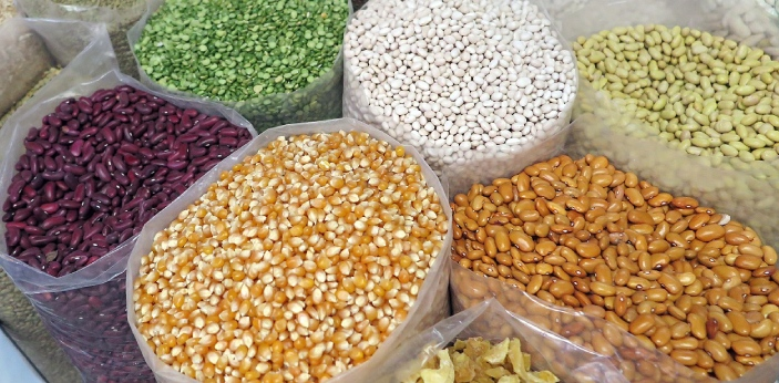 Cereals and pulses are grains that are cultivated in large quantities, and they are useful for both