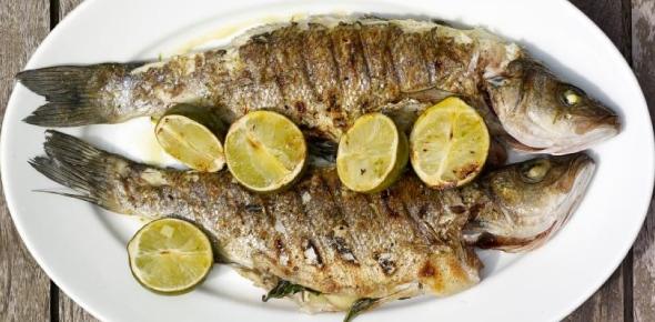 Which fish tastes the best?