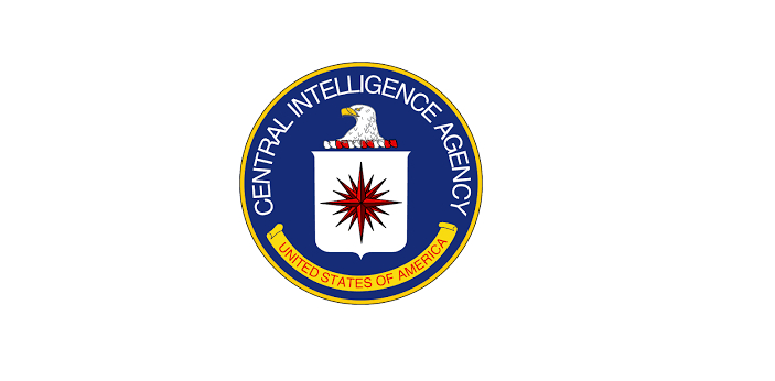 CIA and DIA are parts of the United States of America security agencies. They are created to ensure