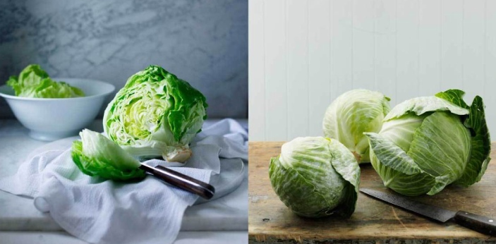 A lot of people think that cabbage and lettuce are the same, but actually, these are different from