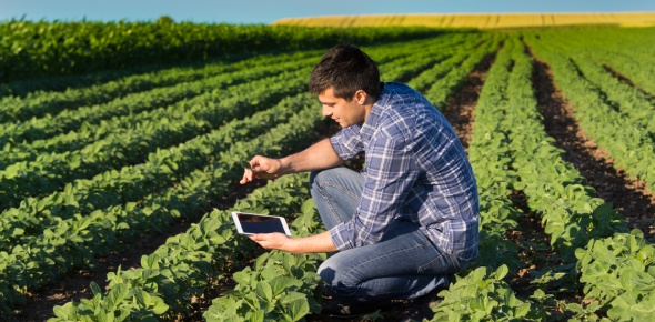 Does Agricultural Science include crop mutation?