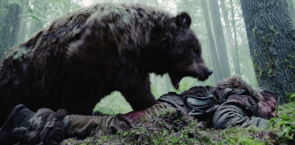What should someone do if attacked by a grizzly bear?