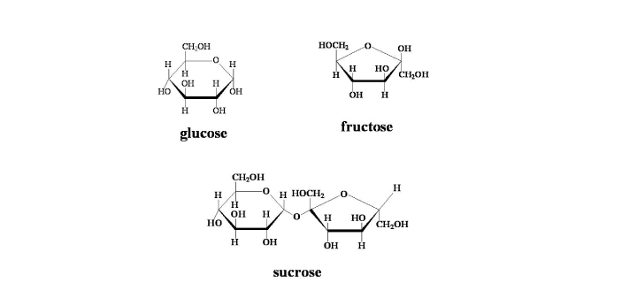 It is important to note that sucrose and fructose are types of sugar. Sucrose is a type of