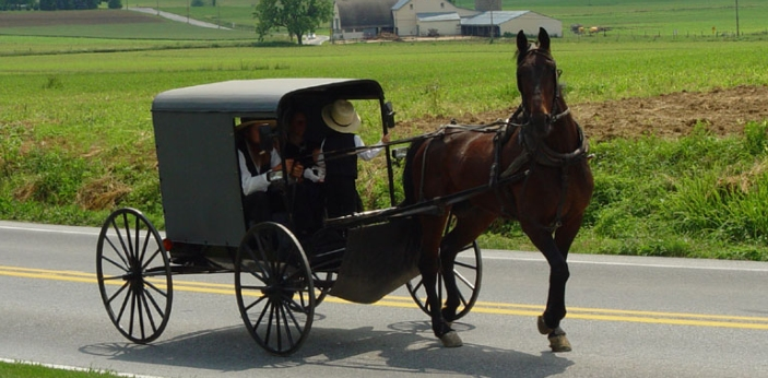 Some may think that they are the same because Quakers and Amish people belong to their own peace