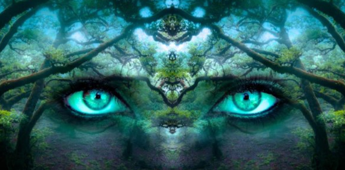 The main difference between a delusion and a hallucination is that a delusion is a fixed yet false