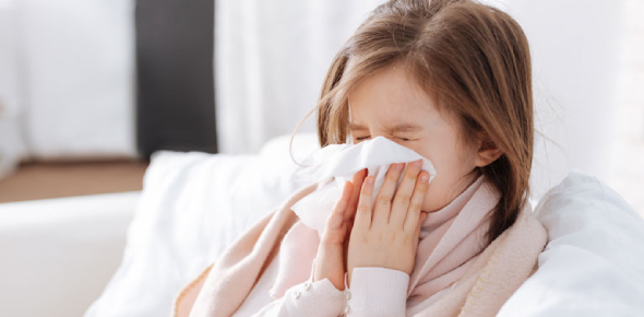 There area number of ways you can cure a nose cold in 24 hours or even less. Everyone seems to have