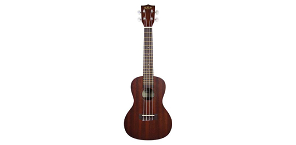 Where can I learn to play the ukulele?