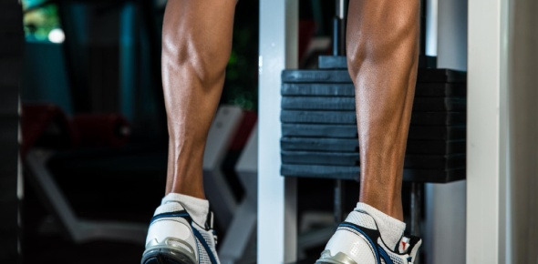 Is it true that the size of your calves is mostly determined by genetics?