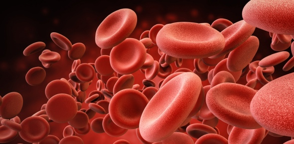 Why is oxygen important for the blood and cells?