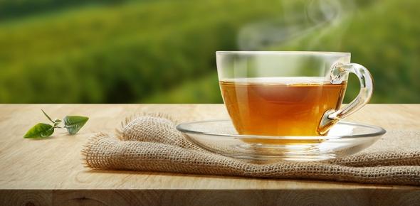 Does green tea actually burn fat?