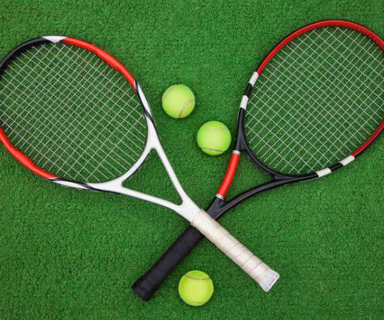 Identify The Court Of Lawn Tennis Through Sliding Quiz Puzzle