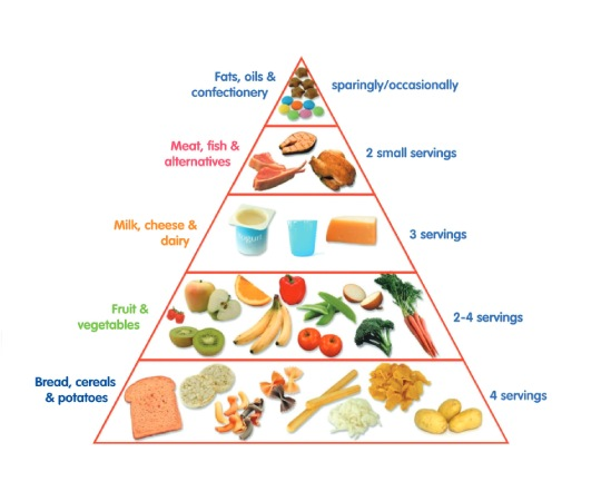 Create Food Pyramid With Sliding Puzzle